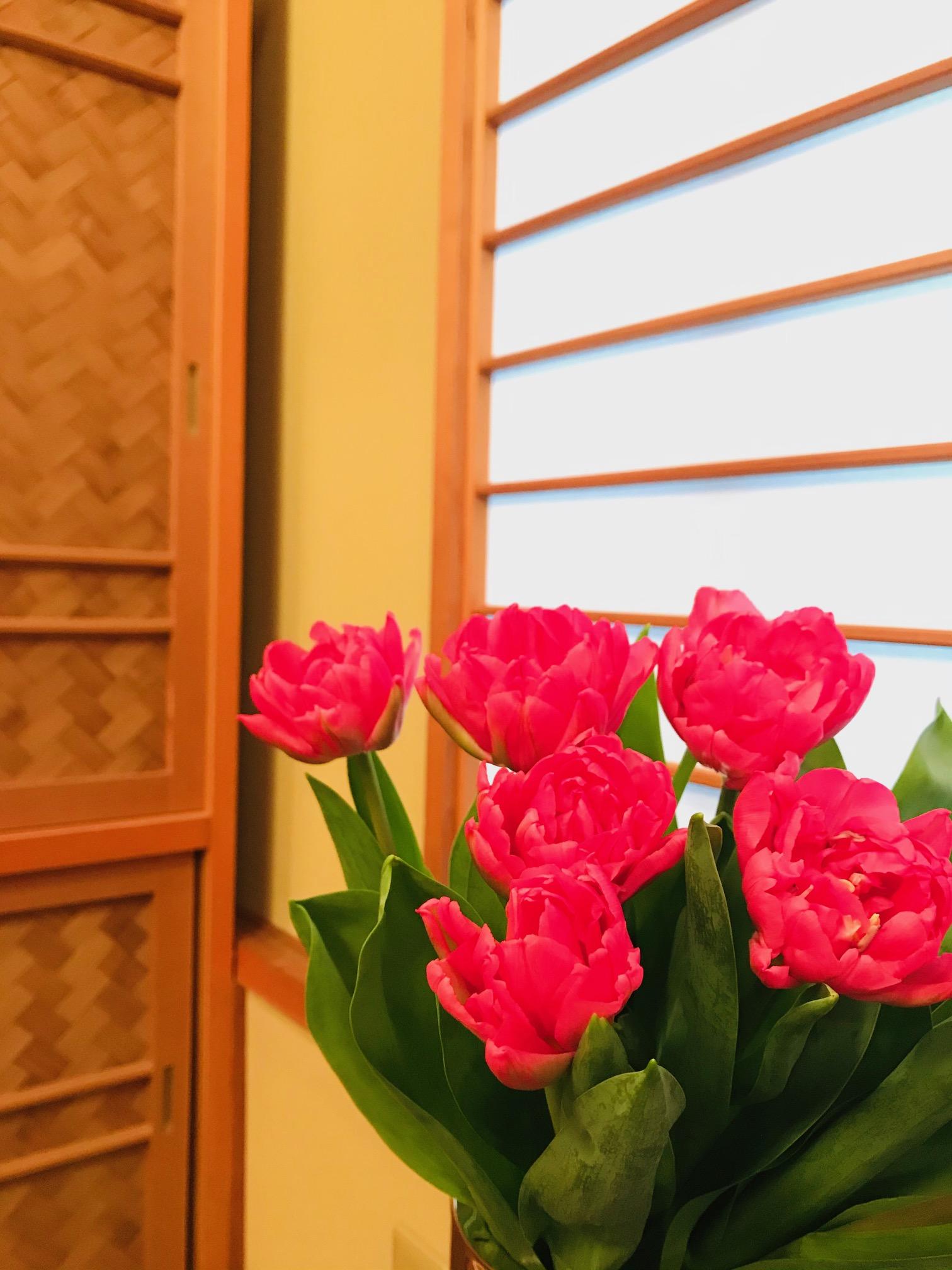 お花屋さん小次郎さんから